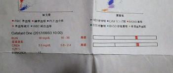 DSC_5229-1.jpg